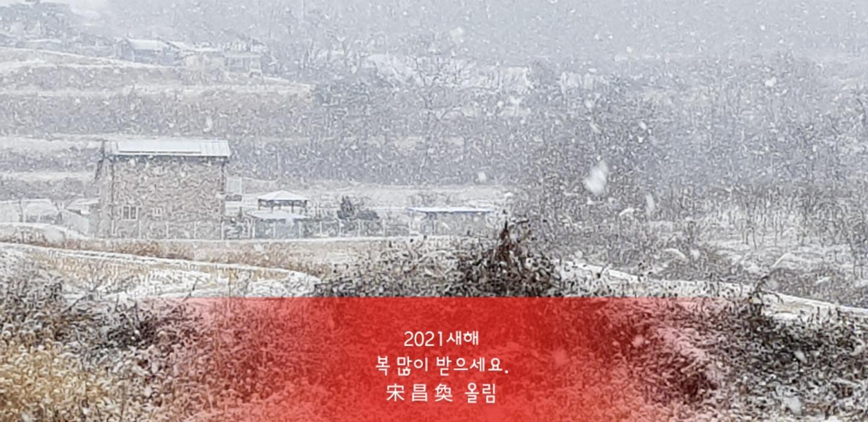 KakaoTalk_20210101_143803490.jpg